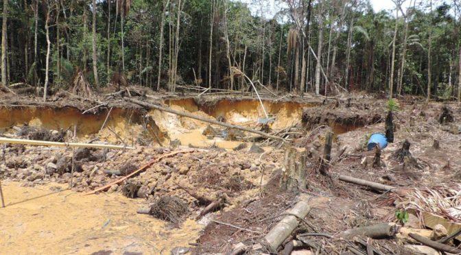 Colombia: Las fórmulas colombianas contra la contaminación y la tala indiscriminada (Caracol)