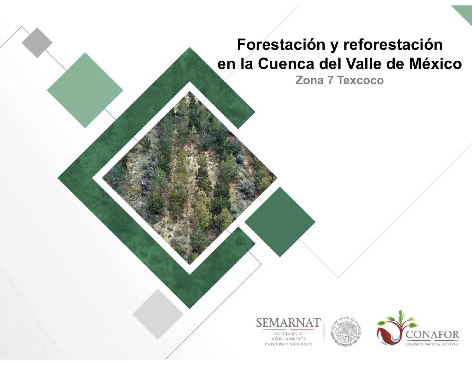 Forestación y reforestación en la Cuenca del Valle de México