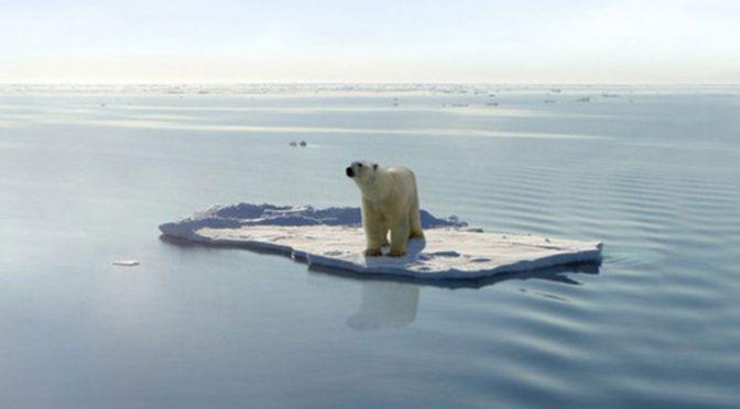 El 50% de las especies del planeta podrían desaparecer en un futuro (La Jornada Guerrero)