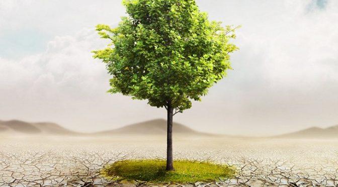 El Gobierno anuncia que aprobará la Ley de Cambio Climático este mes (Ecoticias)