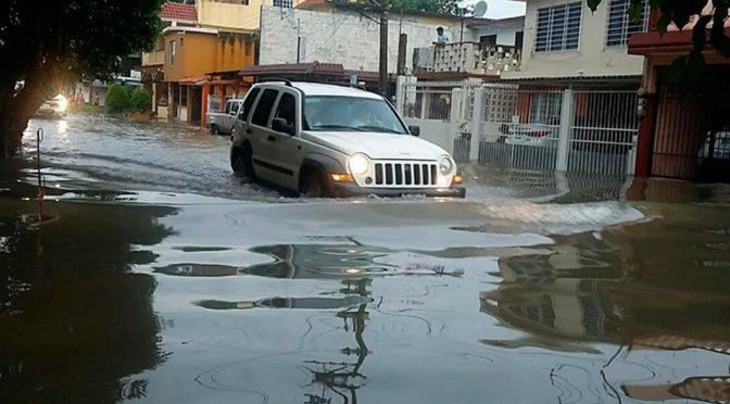 Rellenan otra laguna en Madero; hay 8 colonias en riesgo (Milenio)