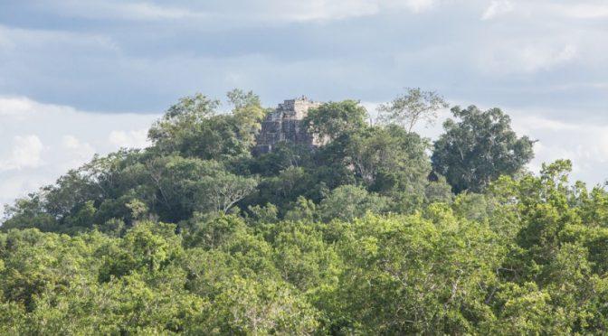 Comunidades rechazan el Tren Maya hasta el corazón de Calakmul (Obras)