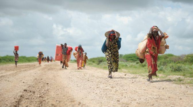 La guerra alimentaria. Hambreando al mundo (EcoPortal)