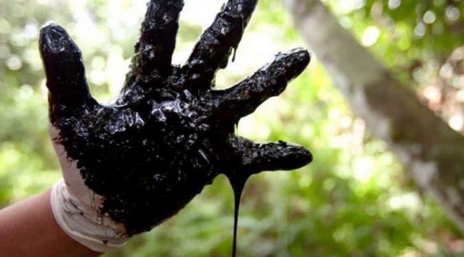 Fin de la era del petróleo. Alimentos o biocombustibles (EcoPortal)
