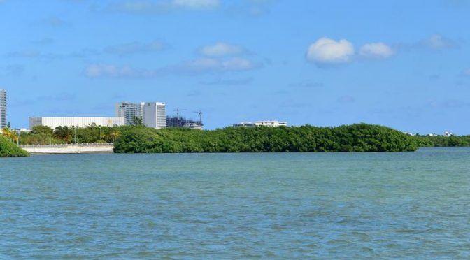 Laguna Nichupté se encuentra en riesgo por metales tóxicos (Yucatán a la Mano)