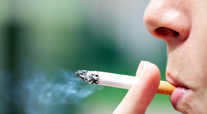 Fumar afecta negativamente al medio ambiente (Ecoticias)