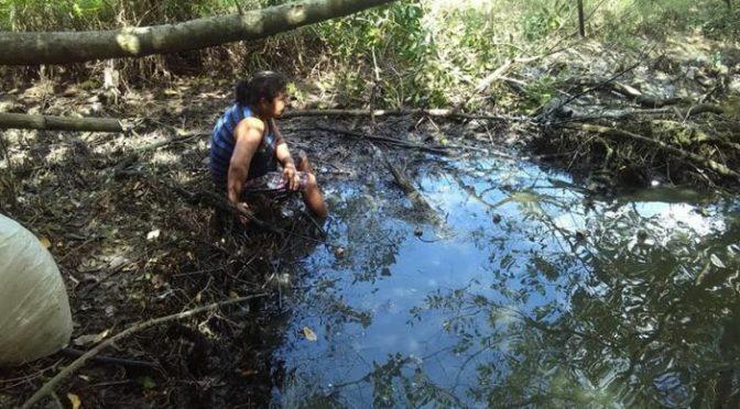 Tabasco: Envenena ingenio ríos y lagunas (Tabasco Hoy)