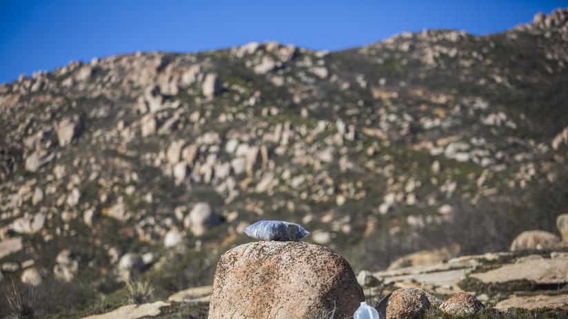 Cuatro mujeres, culpables de varios delitos en EE.UU. por dejar agua para migrantes en el desierto (Actualidad)