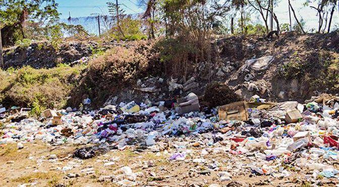 Guerrero: Piden regidores aprobar Programa de Ordenamiento Ecológico y Territorial (El Sol de Acapulco)