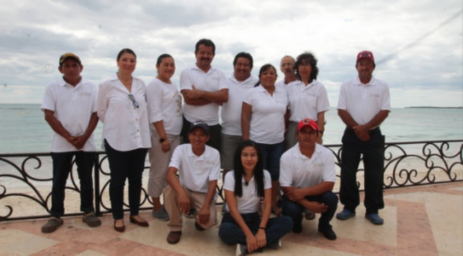 Quintana Roo: Nace asociación civil playense que vela por tortugas marinas (La Jornada Maya)