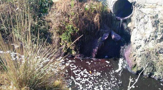 Contaminan canal con desechos industriales en Toluca (El Gráfico)