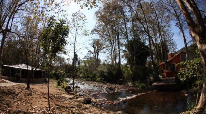 Veracruz: Cría de truchas alternativa económica para municipios (El Sol de Córdoba)