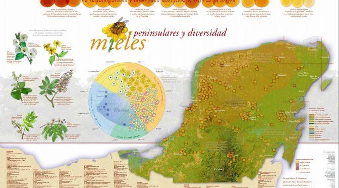 Apicultores exigen declarar emergencia por muerte de abejas en Yucatán (Plumas Atómicas)