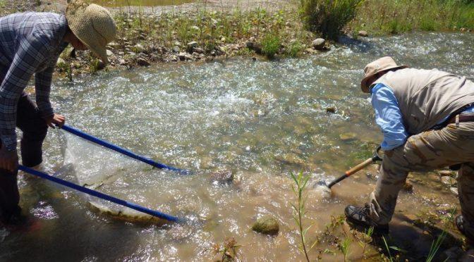 Monitorea IPN la calidad del agua en áreas naturales protegidas (MVS Noticias)