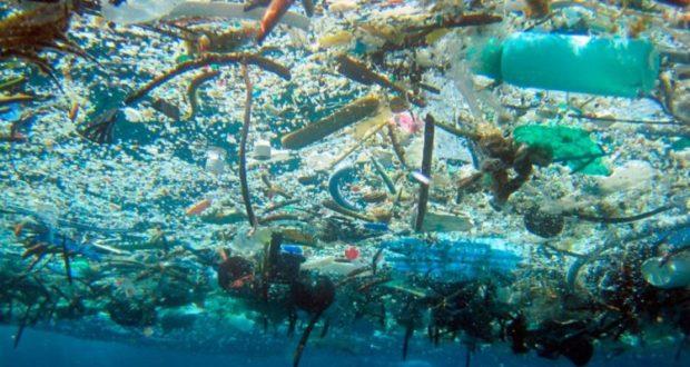 Sí se puede con el plástico (El Semanario)