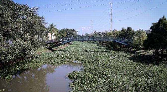 Planean construir más plantas tratadoras de agua en Ocotlán (Decisiones)