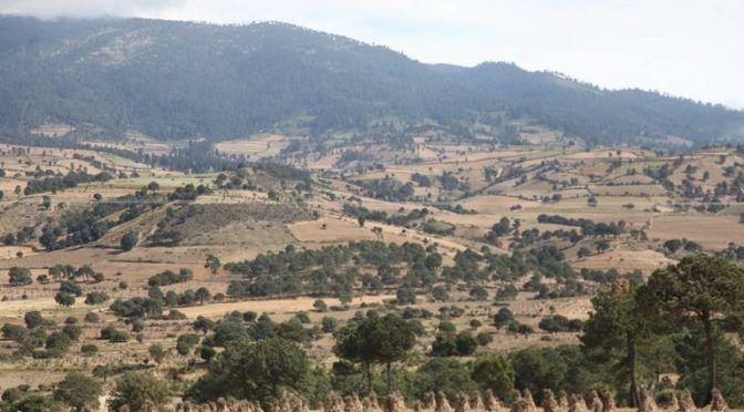Cuando las montañas se quedan sin árboles, las ciudades resienten la falta de agua