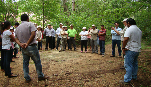 ESCASO ACTIVISMO SOBRE TEMAS AMBIENTALES EN YUCATÁN (Lector MX)