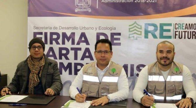 Plantarán 10 mil árboles en Santa Catarina (ABC Noticias)