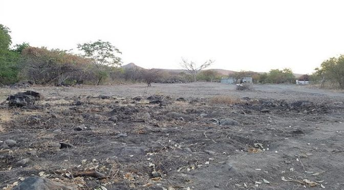 Ecocidio en Tierra Caliente arriesga el abasto de agua de miles de personas (La Voz de Michoacán)