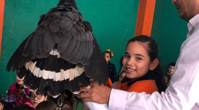 """El ecoparque """"Yolihuani"""" suma 13 años preservando especies de fauna silvestre amenazadas (El Dictamen)"""