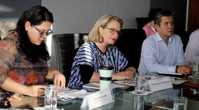 Semarnat e Inegi trabajan a favor de las prioridades ambientales del país (Red TN)