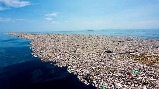 Plástico en el mar ha ocasionado la extinción de 660 especies a lo largo de 20 años (MiMorelia)