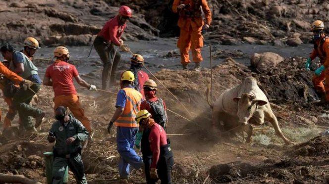 Caen los primeros 5 responsables por derrumbe de presa en Brasil (Excélsior)