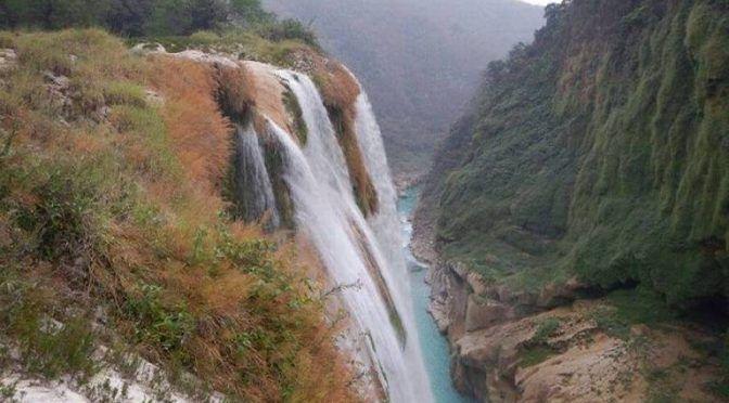 """Se deben tomar acciones para que la cascada de """"Tamul"""" no se seque (El Sol de San Luis)"""