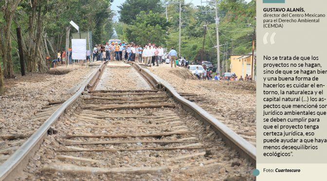 Del emblemático jaguar hasta aves y flora peligran por el Tren Maya, advierten ambientalistas (Sin Embargo)