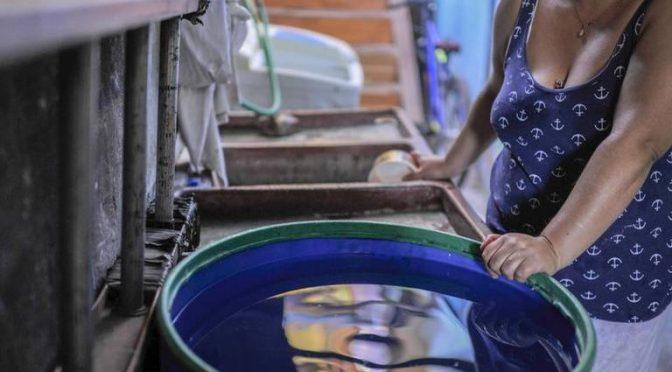 San Luis Potosí: Justifican desabasto de agua, por rehablitación de pozos (El Sol de San Luis)