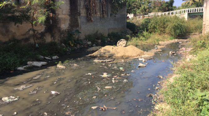 Aguas negras generan foco de infección en la Costa de Oaxaca (Imparcial Oaxaca)