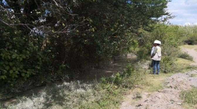 Defensoría pide atender afectaciones ocasionadas por minera Cuzcatlán (Proceso)