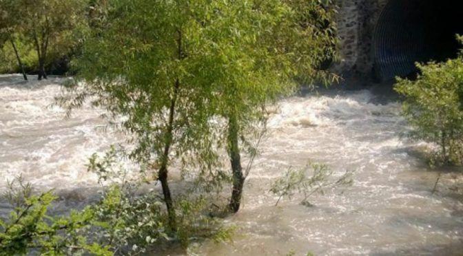 Busca investigador conservación de río El Pueblito (Quadrantín)