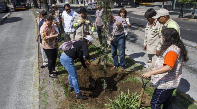 Proyectos Riesgosos (Reporte Índigo)