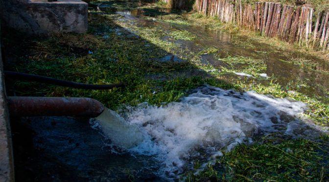 Con este método, científicos del IPN tratarán aguas residuales (Uno TV)