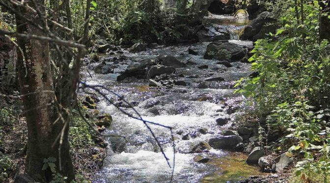 Huachicol de agua ordeña a San Agustín Etla (Nvi Noticias)