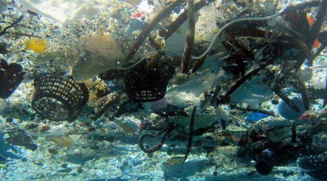 Contaminan el río Pánuco 75 toneladas anuales de basura (La Función)
