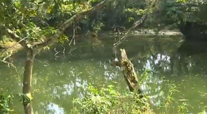 "Socavón se ""traga"" agua de un río en Veracruz (Vanguardia)"
