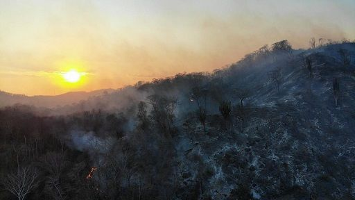 Oaxaca: 16 mil litros de agua contra el fuego en la Sierra Sur (Oaxaca día a día)