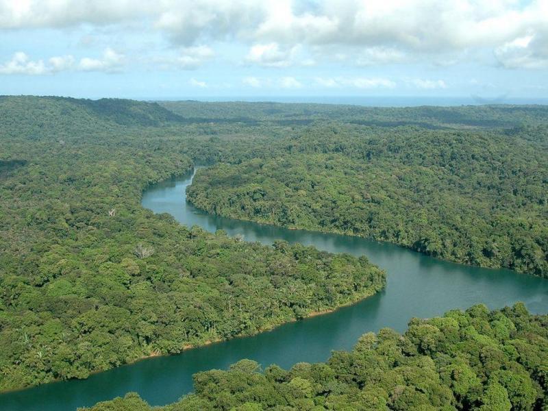 Cuencas hidrográficas: fundamentos y perspectivas para su manejo y gestión