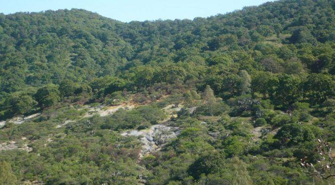 Guanajuato: Imposible llevar agua a serranía alta: Simapag (Periódico correo)