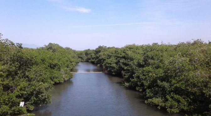 Jalisco: Reparan colector de aguas negras que contaminó área natural protegida en Puerto Vallarta (Reporte Índigo)