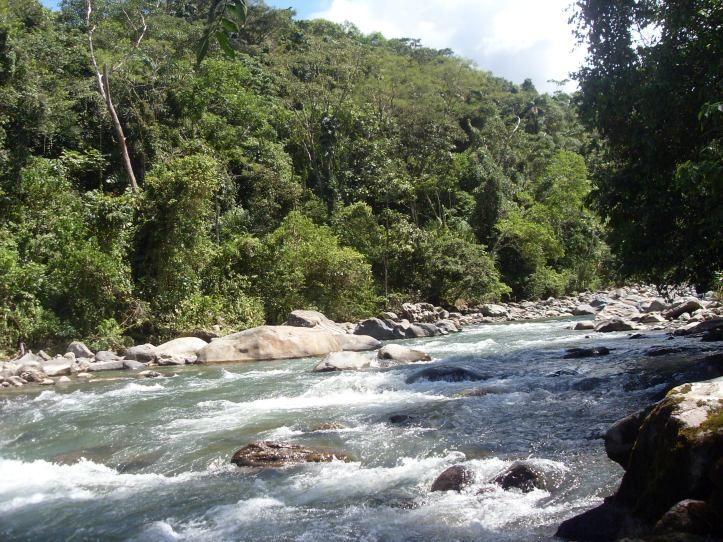 A 2 años de la 4T: ¿qué se hace para mantener la salud de los ecosistemas?