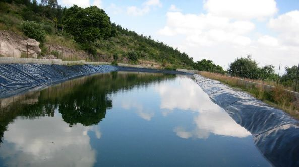 Día Mundial del Agua: el compromiso de la industria privada a favor de los recursos hídricos (Paola Rojas)