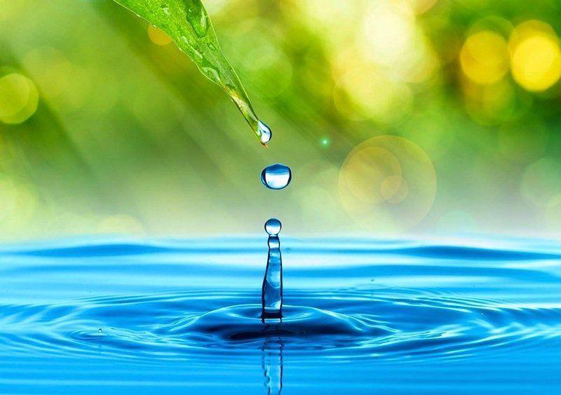 Reutilización del Agua de Tratamiento Apoyará la Sustentabilidad (La Jornada)