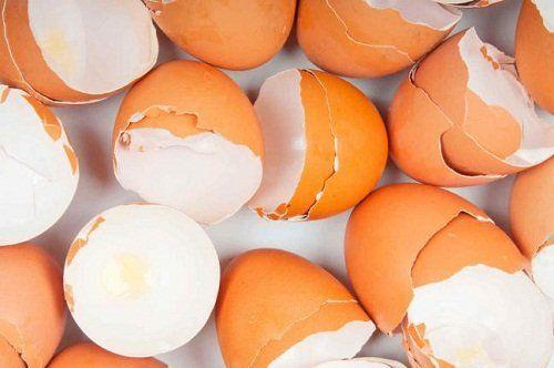 Estado de México: Recibirán cascarones de huevo para sanear el Río Lerma (Asi sucede)