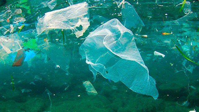 Golfo de México contaminado, principalmente de hidrocarburos, plaguicidas y plásticos (Mi Morelia)