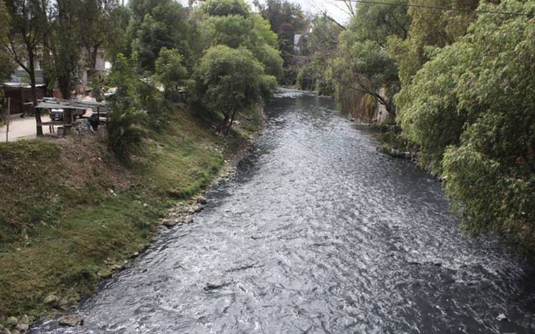 Xalapa: Cuerpos de agua dulce podrían perderse definitivamente (El Sol de Orizaba)