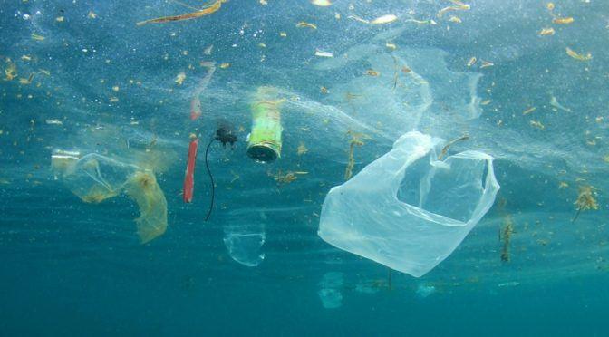 CDMX: Bolsas de plástico se disuelven en el agua y  se espera llegue a México (Milenio)